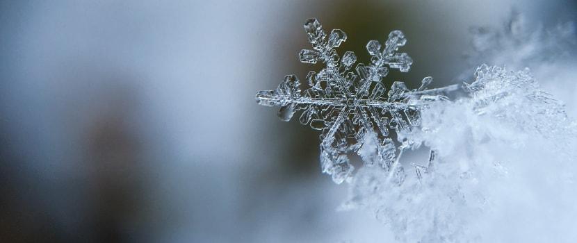 doppelkinn einfrieren, schneeflocke winter